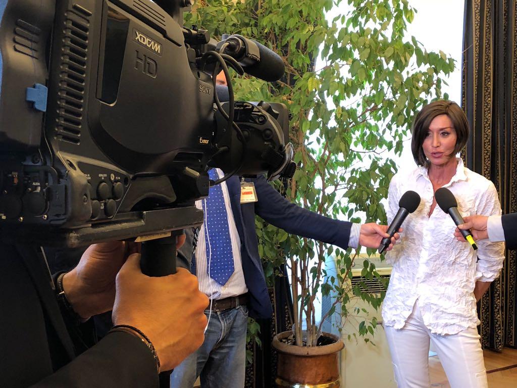 Anna maria bernini intervista