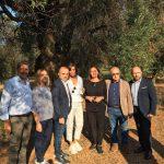 In Puglia, con gli imprenditori rovinati dalla Xylella